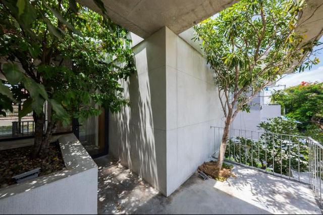 Báo Mỹ ngỡ ngàng với ngôi nhà tràn ngập cây xanh tuyệt đẹp giữa lòng Sài Gòn - ảnh 8