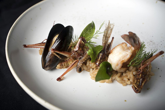 Đầu bếp Thái Lan biến côn trùng thành đồ ăn cao cấp - Ảnh 8.