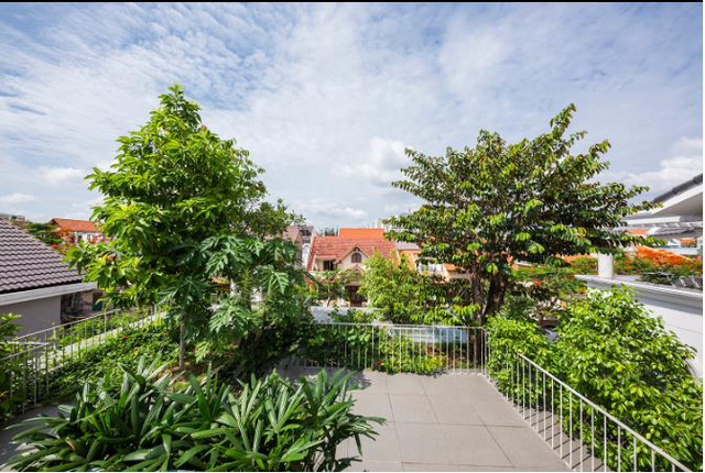 Báo Mỹ ngỡ ngàng với ngôi nhà tràn ngập cây xanh tuyệt đẹp giữa lòng Sài Gòn - ảnh 10