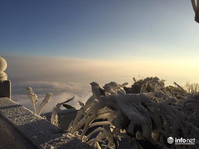 Nhiệt độ xuống âm 7 độ C, đỉnh Fansipan phủ trắng băng tuyết - Ảnh 10.