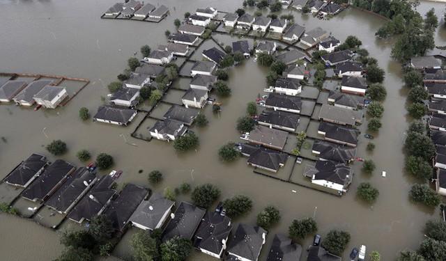 13 bức ảnh lột tả những thảm họa mà nhân loại phải gánh chịu trong năm 2017 - Ảnh 10.