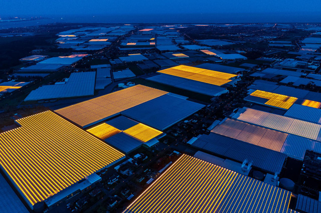 Hà Lan: Quốc gia nhỏ bé có thể nuôi cả thế giới - Ảnh 11.