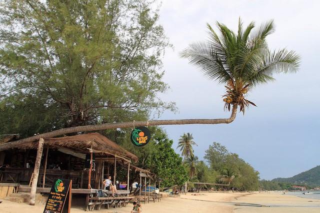 Mặt tối đáng buồn trong ngành du lịch trị giá 70 tỷ USD của Thái Lan, nơi vẫn được ca ngợi là xứ thiên đường, con gà đẻ trứng vàng cho nền kinh tế - Ảnh 1.