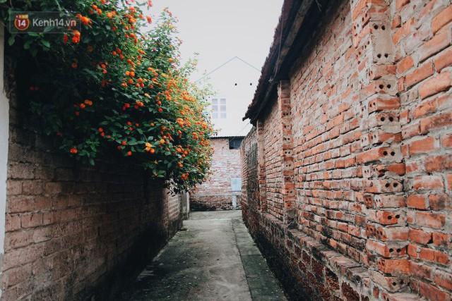 Ngôi làng có 956 nhà cổ ở Hà Nội: Có nhà gần 400 năm tuổi, ngỏ mua giá bạc tỉ nhưng không bán - Ảnh 9.