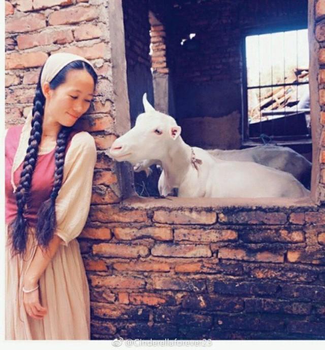 Ngôi nhà trên núi đẹp như tranh vẽ và cuộc sống bình lặng của cô gái tự nhận mình là cô bé Lọ Lem - Ảnh 7.