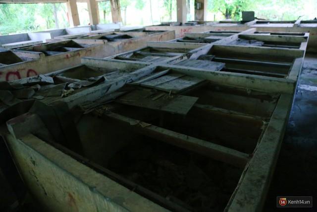 Cảnh u ám bên trong khu chợ tiền tỷ ở Sài Gòn bị bỏ hoang gần 15 năm qua - Ảnh 14.