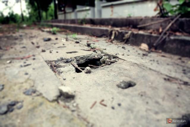 Cảnh u ám bên trong khu chợ tiền tỷ ở Sài Gòn bị bỏ hoang gần 15 năm qua - Ảnh 19.