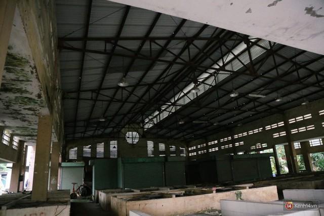 Cảnh u ám bên trong khu chợ tiền tỷ ở Sài Gòn bị bỏ hoang gần 15 năm qua - Ảnh 10.
