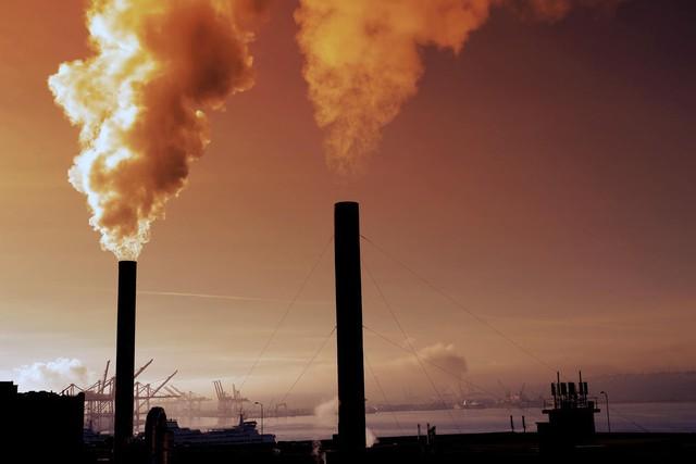WHO cảnh báo: 93% trẻ em dưới 15 tuổi đang phải sống dưới bầu không khí ô nhiễm mỗi ngày - Ảnh 3.