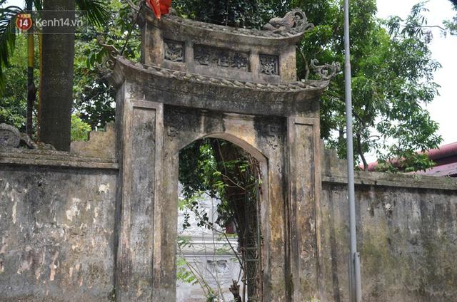 Ly kỳ chuyện cây sưa giá trăm tỷ ở Hà Nội, người dân mất ăn mất ngủ thay nhau canh giữ, mặc áo giáp sắt để chống kẻ trộm - Ảnh 4.