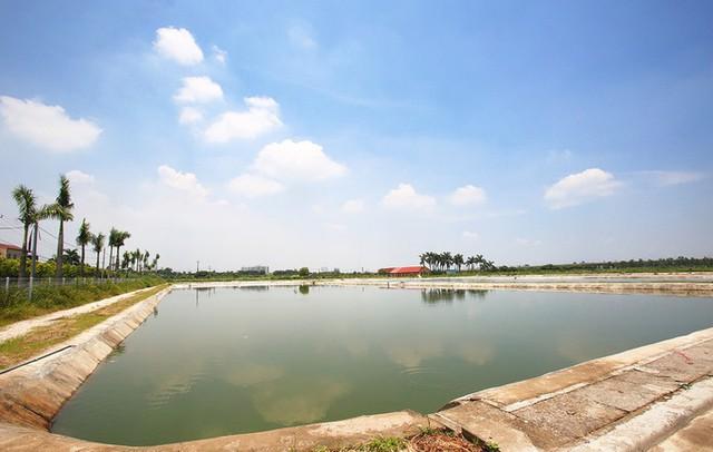 Ngay tại Hà Nội có một ngôi trường rộng gần 200ha, cây cối, hoa trái phủ xanh khắp nơi như rừng nhiệt đới - Ảnh 13.