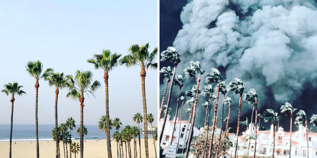 Chùm ảnh California sau cháy rừng: Thiên đường chìm trong biển lửa, con người nhỏ bé trốn chạy nhưng không bao giờ bỏ cuộc - Ảnh 1.