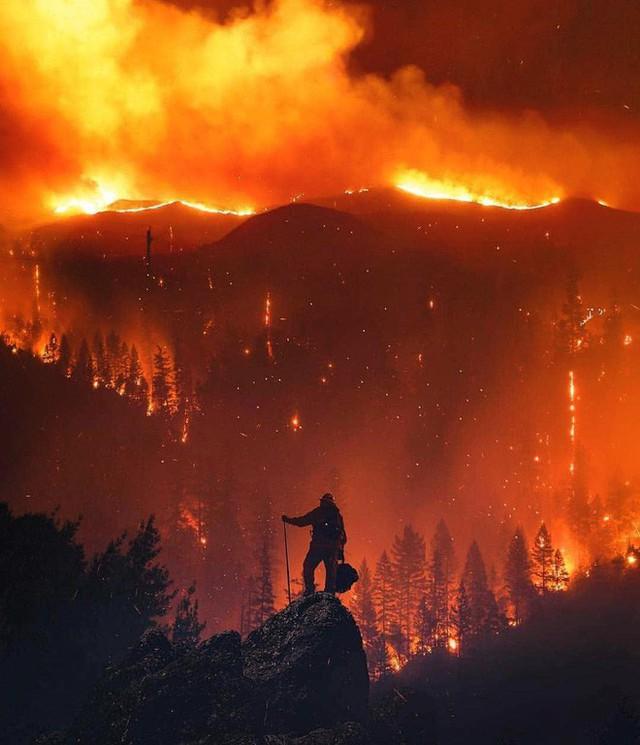 Chùm ảnh California sau cháy rừng: Thiên đường chìm trong biển lửa, con người nhỏ bé trốn chạy nhưng không bao giờ bỏ cuộc - Ảnh 25.