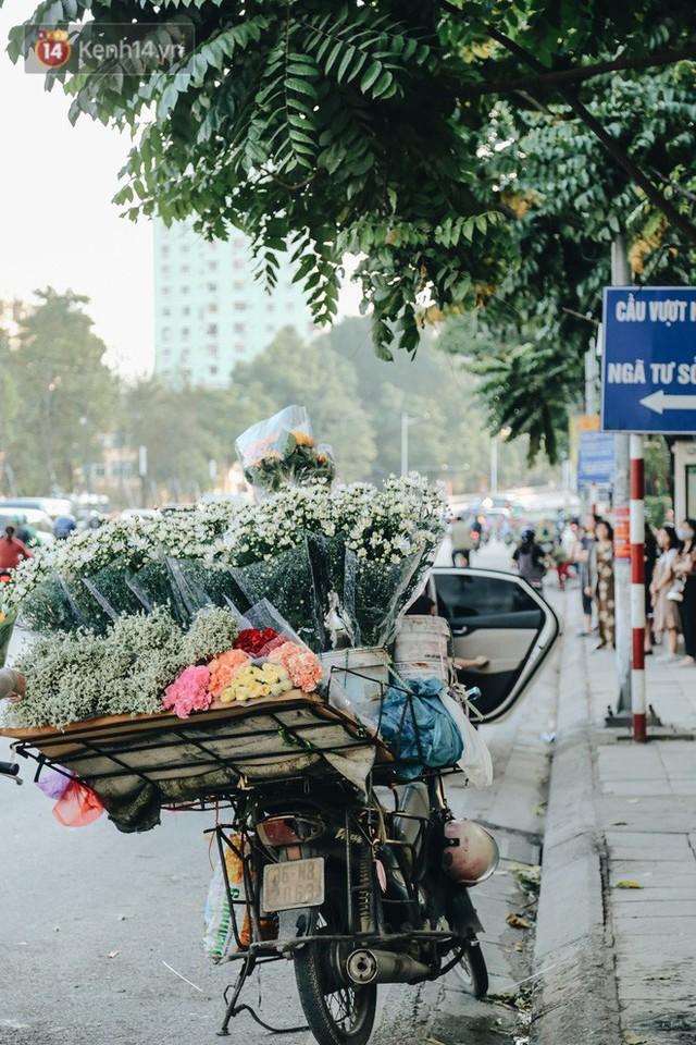 Cúc hoạ mi vào vụ mùa, nông dân Hà Nội hớn hở chào mừng khách đến mua hoa và chụp ảnh - Ảnh 24.
