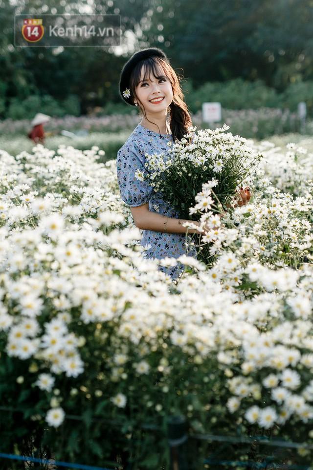 Vườn cúc hoạ mi ở Hà Nội thất thủ cuối tuần: 1 mét vuông có chục nhiếp ảnh gia và mẫu - Ảnh 3.