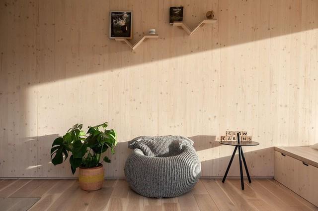 Cuộc sống mơ ước: Được tự do, tự tại với thiên nhiên chỉ với một ngôi nhà nhỏ gọn - Ảnh 5.