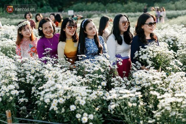 Vườn cúc hoạ mi ở Hà Nội thất thủ cuối tuần: 1 mét vuông có chục nhiếp ảnh gia và mẫu - Ảnh 6.