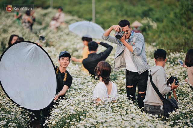 Vườn cúc hoạ mi ở Hà Nội thất thủ cuối tuần: 1 mét vuông có chục nhiếp ảnh gia và mẫu - Ảnh 9.