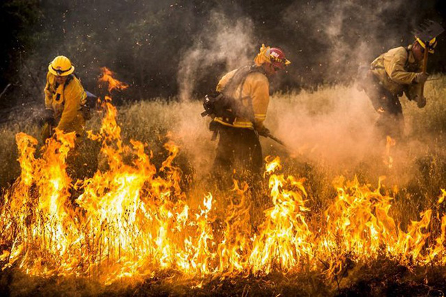 Vì sao quá nhiều người mất tích trong thảm họa cháy rừng California - Ảnh 2.