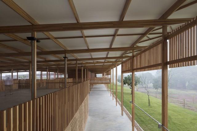 Ngôi trường làm từ gỗ và gạch bùn trong rừng nhiệt đới Brazil giành giải kiến trúc xuất sắc nhất thế giới 2018 - Ảnh 7.