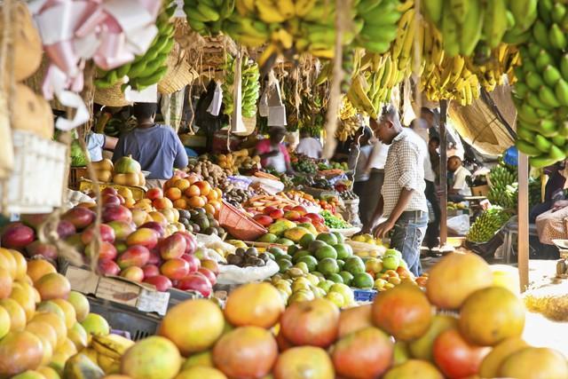 Tại sao người dân ở các quốc gia giàu có đang ngày càng ăn nhiều thức ăn chay hơn? - Ảnh 3.