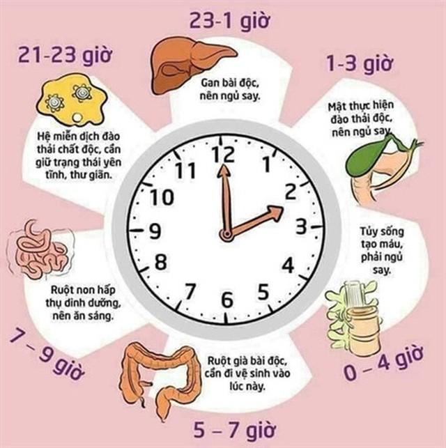4 bí quyết ngủ đúng của Danh y Hoa Đà: Làm được 1 sẽ khỏe mạnh, làm cả 4 điều thì sống lâu - Ảnh 2.