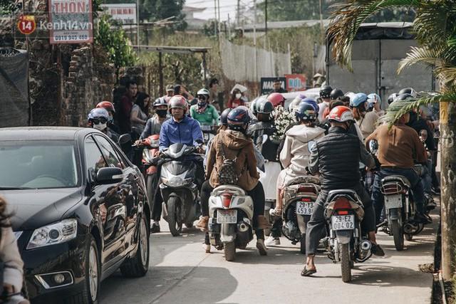 Vườn cúc họa mi ở Hà Nội tiếp tục thất thủ: Đường vào tắc nghẽn, chụp một bức ảnh phải né bao nhiêu người - Ảnh 3.