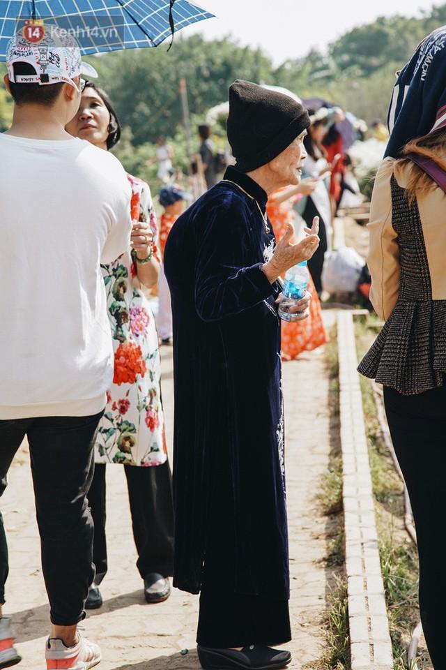 Vườn cúc họa mi ở Hà Nội tiếp tục thất thủ: Đường vào tắc nghẽn, chụp một bức ảnh phải né bao nhiêu người - Ảnh 20.
