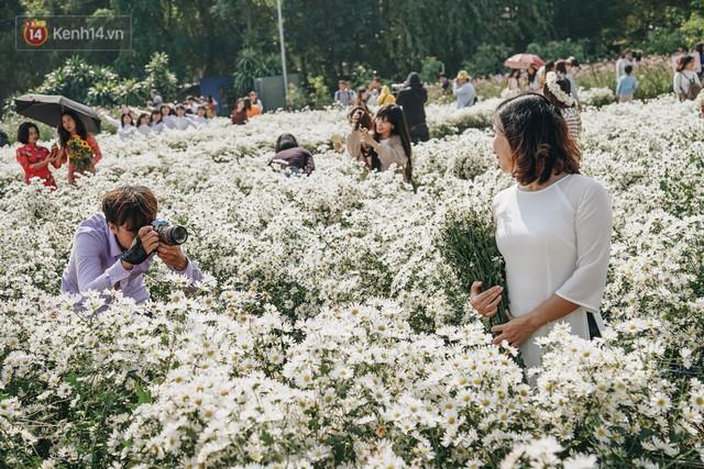 Vườn cúc họa mi ở Hà Nội tiếp tục thất thủ: Đường vào tắc nghẽn, chụp một bức ảnh phải né bao nhiêu người - Ảnh 10.