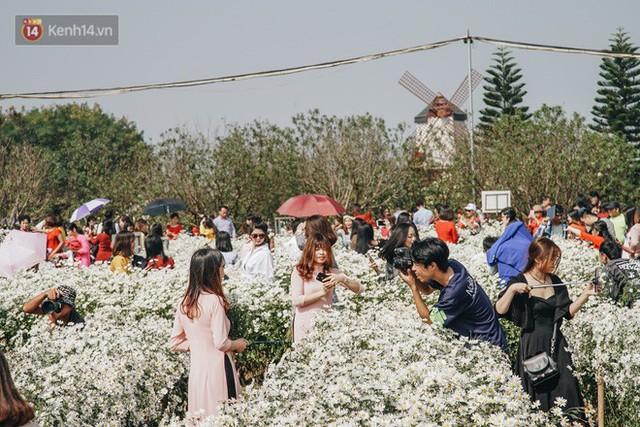 Vườn cúc họa mi ở Hà Nội tiếp tục thất thủ: Đường vào tắc nghẽn, chụp một bức ảnh phải né bao nhiêu người - Ảnh 11.