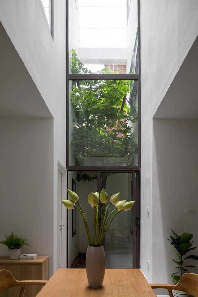 Xây từ miếng đất nhiều nhược điểm, ngôi nhà 85m² ở Hà Nội này vẫn được trầm trồ khen vừa đẹp, vừa xanh - Ảnh 10.