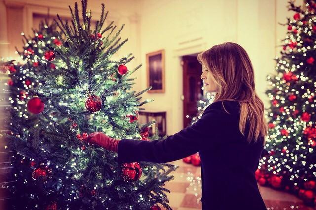 Trang trí Giáng sinh cho Nhà Trắng, bà Melania Trump gây tranh cãi khi sử dụng toàn cây thông màu đỏ - Ảnh 9.