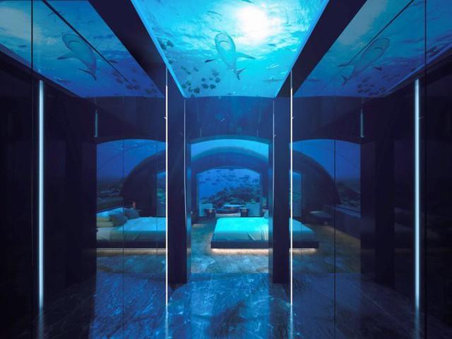 Bên trong khách sạn dưới biển đầu tiên trên thế giới, nơi bạn có thể ngủ cạnh cá mập với chi phí 1 tỷ/1 đêm - Ảnh 6.