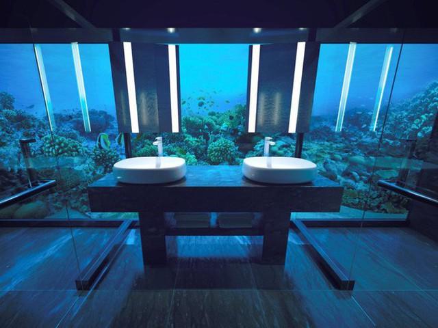 Bên trong khách sạn dưới biển đầu tiên trên thế giới, nơi bạn có thể ngủ cạnh cá mập với chi phí 1 tỷ/1 đêm - Ảnh 8.