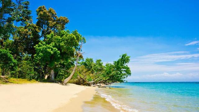 Bán đảo Masoala: Thiên đường nhiệt đới đa dạng bậc nhất thế giới nằm ở đây - Ảnh 3.
