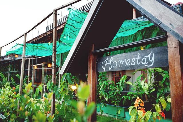 CEO lọt top 10 nữ doanh nhân kế nghiệp vượt bậc ở Việt Nam nói về vấn đề kinh doanh homestay: Chỉ căn hộ xinh, kiến trúc phong mhữngh là chưa đủ! - Ảnh 1.