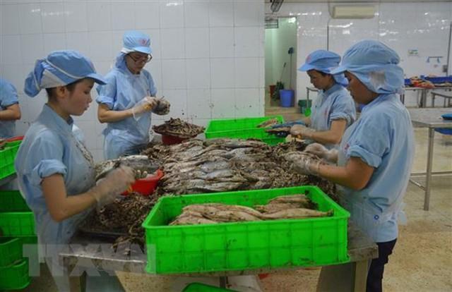 Khắc phục thẻ vàng IUU: Phát triển nghề cá theo thông lệ quốc tế - Ảnh 1.