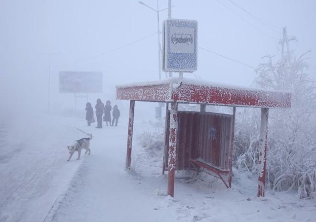 Khám phá cuộc sống của du học sinh Việt ở nơi lạnh nhất thế giới, nhiệt độ xuống -60 độ C mới được nghỉ học! - Ảnh 14.