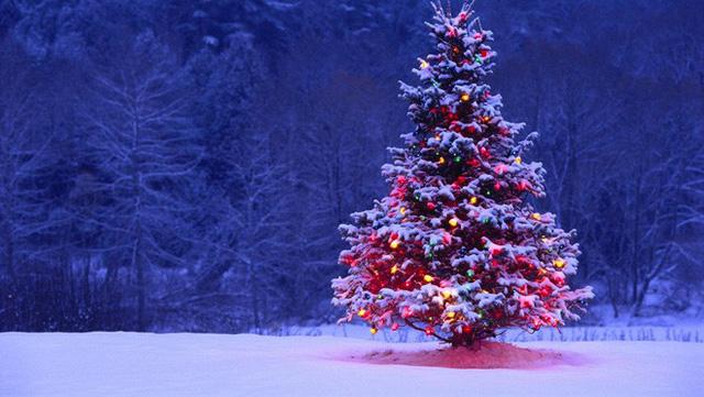 Noel là gì? Nguồn gốc và ý nghĩa của ngày Noel - VnReview - Tin nóng - Ảnh 6.