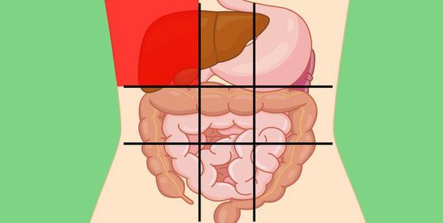Nhờ bản đồ bụng này mà bạn sẽ biết các cơn đau ở mỗi vị trí trên bụng là do nguyên nhân nào gây ra - Ảnh 1.