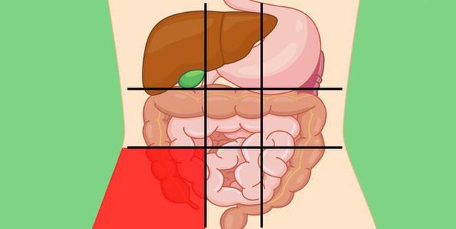 Nhờ bản đồ bụng này mà bạn sẽ biết các cơn đau ở mỗi vị trí trên bụng là do nguyên nhân nào gây ra - Ảnh 7.