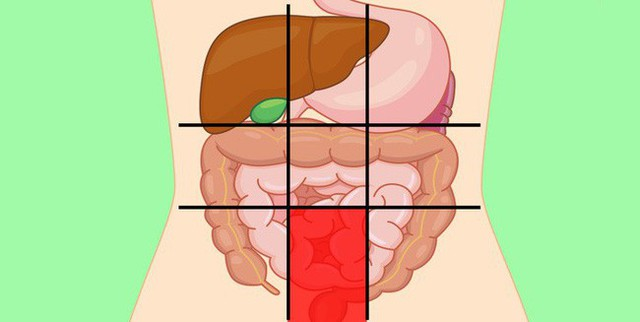 Nhờ bản đồ bụng này mà bạn sẽ biết các cơn đau ở mỗi vị trí trên bụng là do nguyên nhân nào gây ra - Ảnh 8.