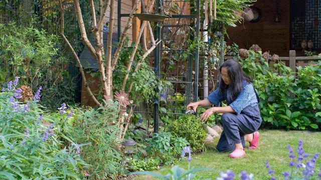 Tất bật nhiều năm tuổi trẻ, người phụ nữ tuổi 40 dành dụm tiền mua căn nhà vườn xinh xắn sống cuộc đời an yên - Ảnh 13.
