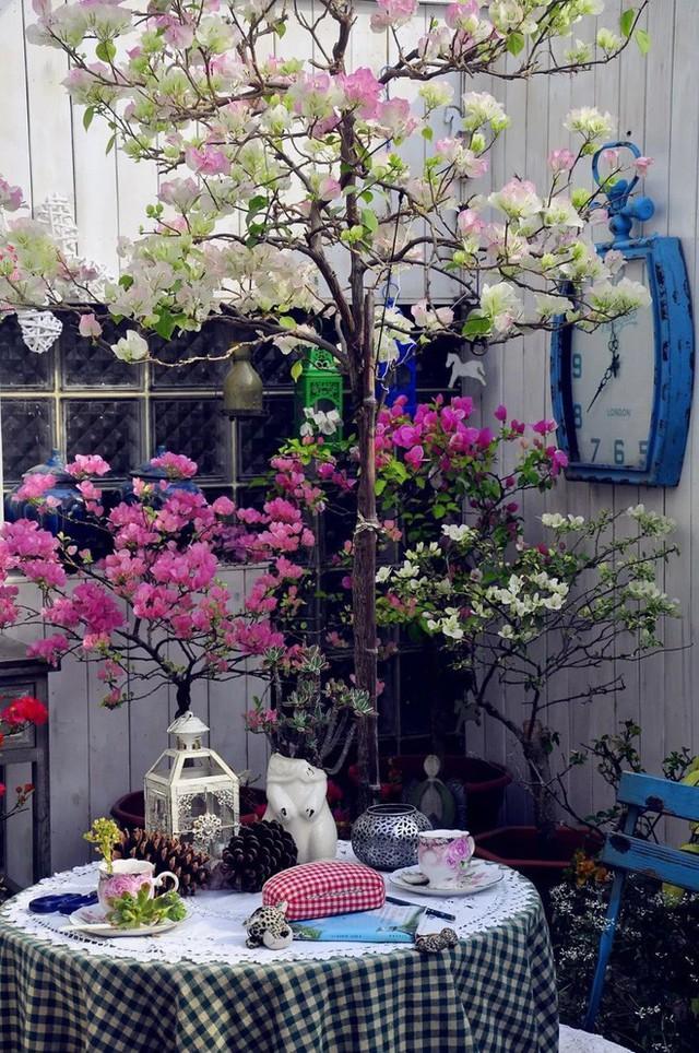 Tất bật nhiều năm tuổi trẻ, người phụ nữ tuổi 40 dành dụm tiền mua căn nhà vườn xinh xắn sống cuộc đời an yên - Ảnh 15.