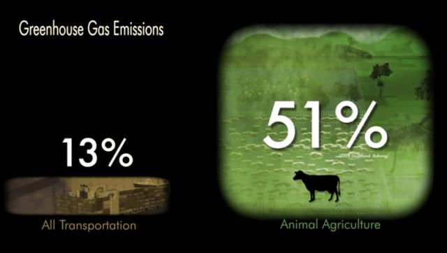 Giáo sư Mỹ: Dù cả thế giới ngưng ăn thịt cũng không giúp được gì cho Trái đất đâu - Ảnh 2.