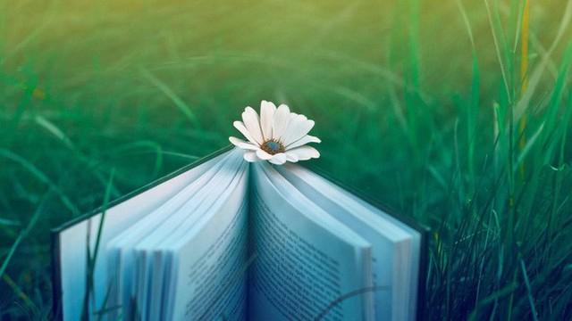1 việc ai cũng nên làm mỗi ngày mới mong có thể sống vui vẻ, an nhiên - Ảnh 2.