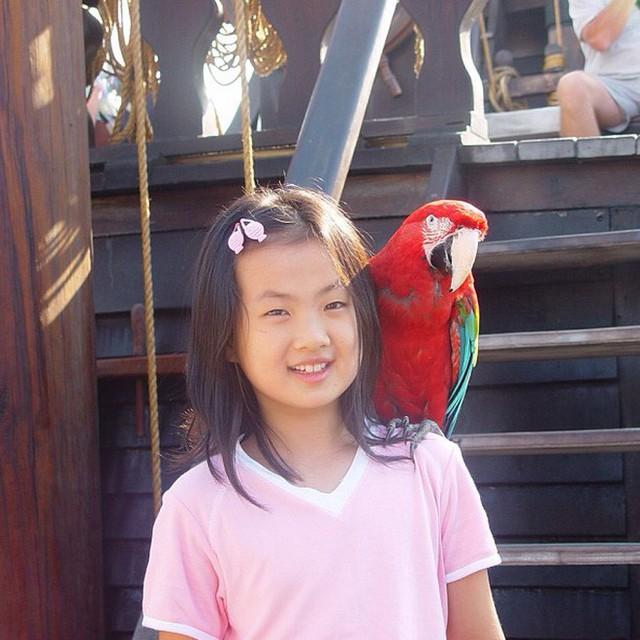 Con gái út ông trùm Huawei: Đã xinh đẹp còn học trường Harvard danh tiếng, mê viết code không kém gì ba lê và thời trang - Ảnh 16.