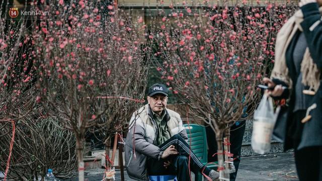 Chùm ảnh: Ghé thăm chợ hoa truyền thống lâu đời nhất Hà Nội - cả năm chỉ họp đúng một phiên duy nhất - Ảnh 6.