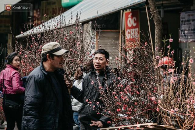 Chùm ảnh: Ghé thăm chợ hoa truyền thống lâu đời nhất Hà Nội - cả năm chỉ họp đúng một phiên duy nhất - Ảnh 7.