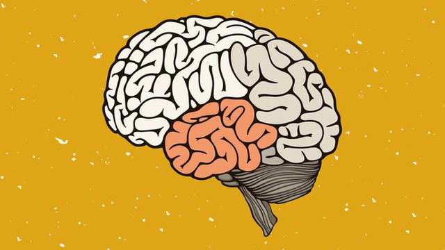 Chữa chứng nhớ mặt mà quên mất tên và cách luyện tập siêu trí nhớ - Ảnh 3.